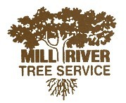 Mill River Tree Service
